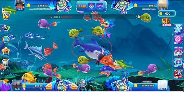 《集结号捕鱼H5》捕鱼达人的鱼群打法策略